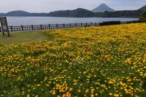 池田湖パラダイス