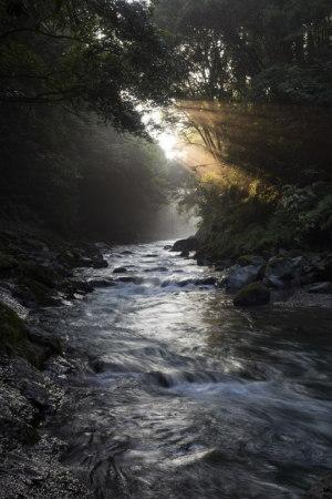 津留川の光芒