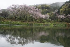 鐙ヶ丘公園